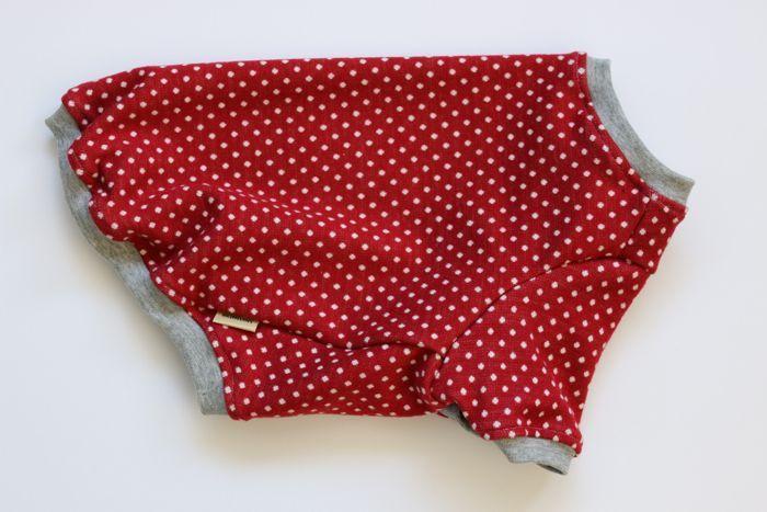 画像1: 【Choice】厚手のミニドットTシャツ ダークレッド