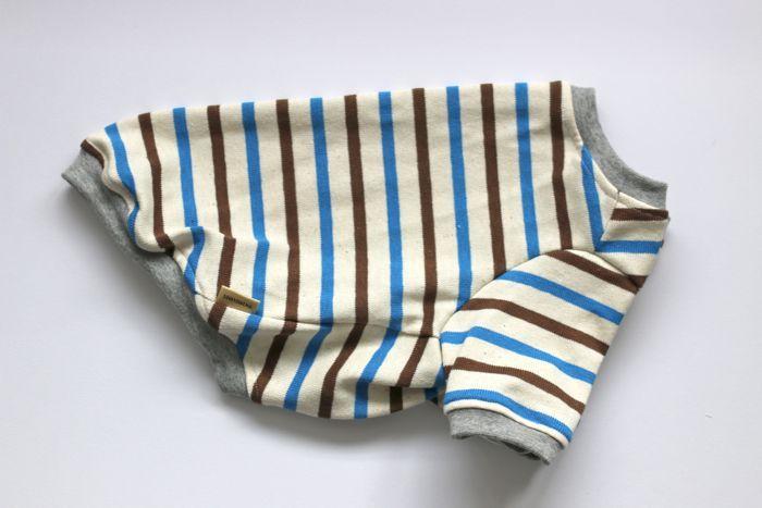 画像1: 【Choice】厚手天竺ボーダーTシャツ 青×茶